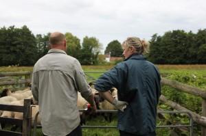 Herd Health planning